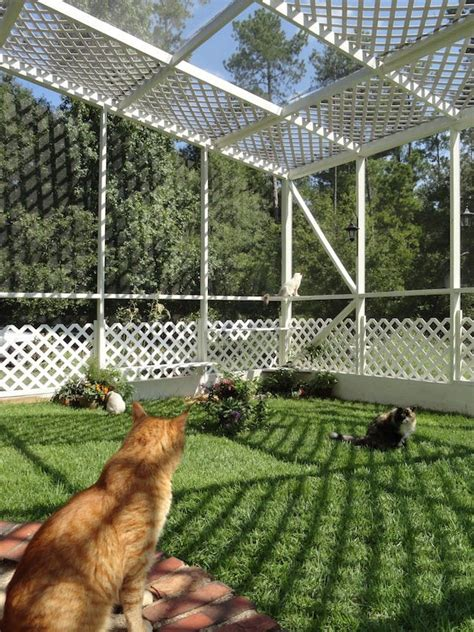 backyard cat enclosure 13 cool catios for your feline friend brit co