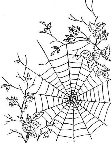 draw website pics for gt cool spider web drawings