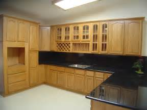 Cabinets Design For Kitchen by Special Kitchen Cabinet Design And Decor Design Interior