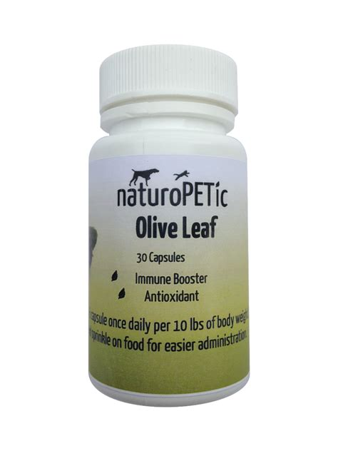 olive for dogs olive leaf naturopetic