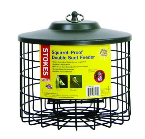 squirrel proof bird feeders webnuggetz com