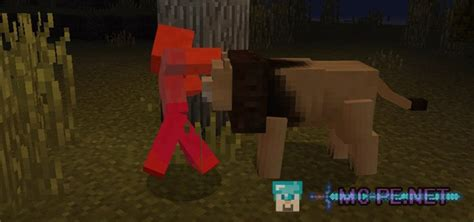 lions addons mcpe minecraft pocket edition downloads