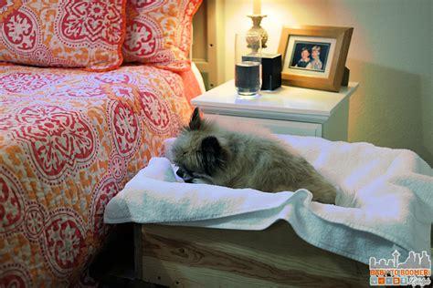 diy raised dog bed diy raised dog bed 28 images raised dog bed 40 diy