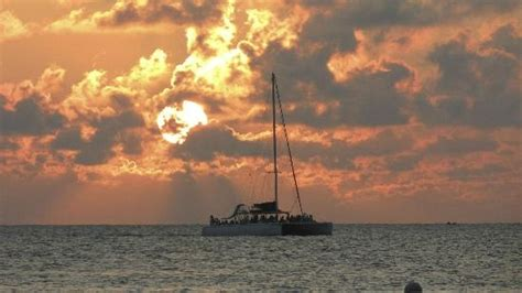 catamaran booze cruise negril jamaica best 25 swept away ideas on pinterest couples swept