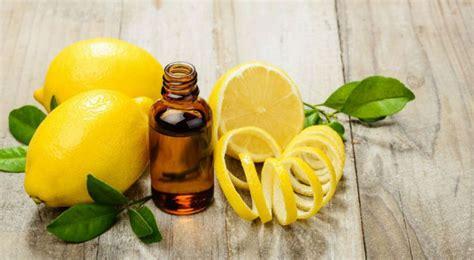 Cure Detox Citron by Detox La Cure De Citron Une Alli 233 E Pour Cet 233 T 233 Bio 224