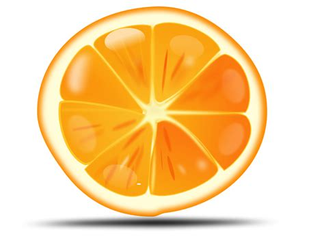 orange clipart orange fruit free stock photo illustration of an