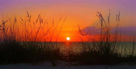 South Florida Detox Sunset by Sunset Kayak Tour Sarasota Bradenton