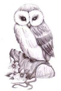 owl pencil sketch by natzs101 on deviantart