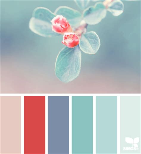 color inspiration color inspiration from nature petals to picots