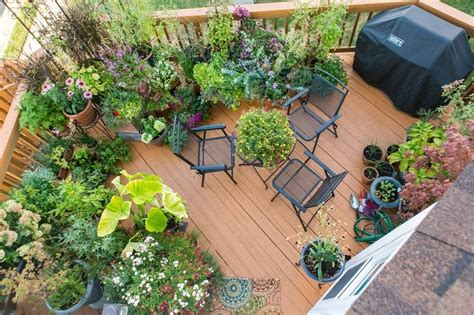 balcony container gardening ideas gardeners take another look at that balcony