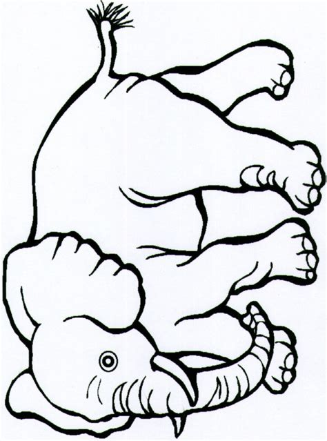 safari person coloring page continents coloring page clipart panda free clipart images