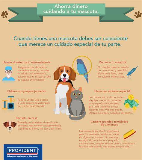 formas de cuidar a los animales wikihow apexwallpapers com cmo cuidar a tu mascota como cuidar a tu perro del calor