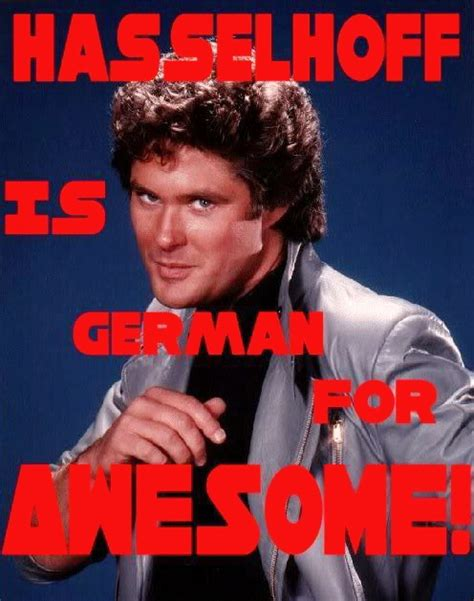David Hasselhoff Meme - mr david hasselhoff to return to the young and the