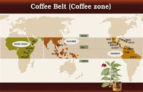 Coffee Zone 커피벨트 coffee belt jinz s