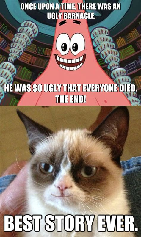 Angry Cat Meme No - image 470174 grumpy cat know your meme