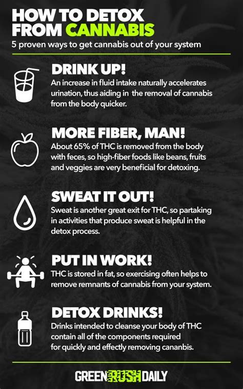 How To Detox Your Faster by How To Flush Out Of Your System 183 Green Daily
