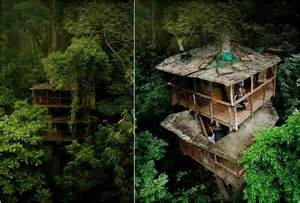 treehouse community finca bellavista tree house community in costa rica