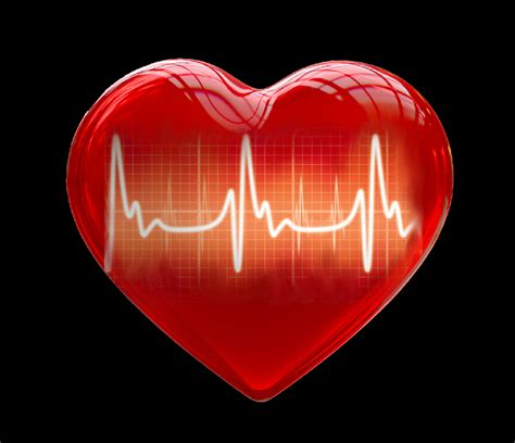 heart pictures images photos risk factors for heart disease and heart attack