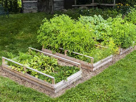 why raised garden beds how and why you should make a raised garden bed saga