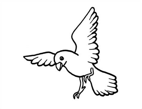 coloring page of birds flying 20 bird coloring pages jpg ai illustrator download