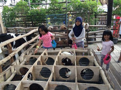 Freezer Mini Di Bandung inilah tempat wisata anak di bandung yang wajib dikunjungi