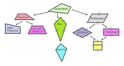 parallelogram diagram quadrilateral diagram tree