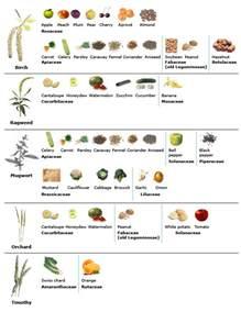 Allergy Chart Allergy Cross Reactivity Chart Anaphylaxis
