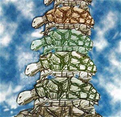 turtles all the way 0241335434 tat forum spiritual magazine featuring dan garmat gary harmon