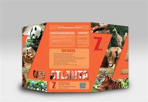 zoo brochure template atlanta zoo brochure by thu doan via behance z o o i