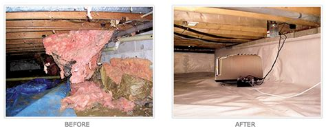 Template For Crawl Space Encapsulation Newnan Ga Pictures Posters News And On Your