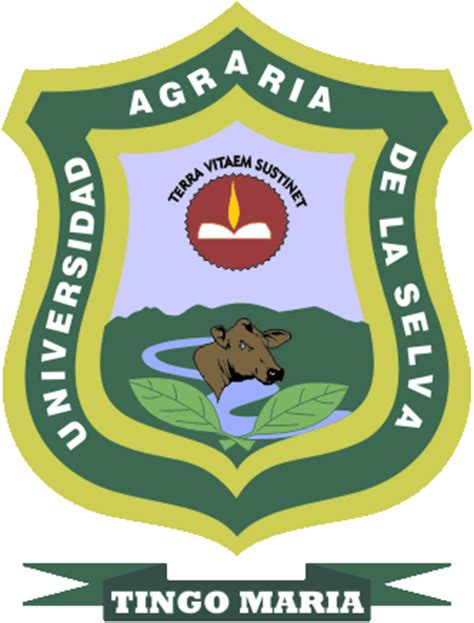principal universidad nacional agraria de la selva universidad nacional agraria de la selva unas