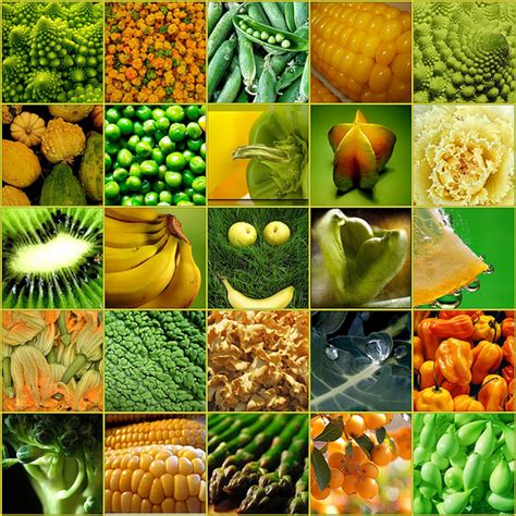 s n vegetables pictures gallery fruits and vegetables images