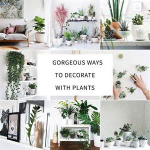 how to decorate your interior with green indoor plants and how to use basic design principles to decorate your home