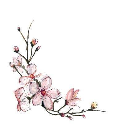 best 25 flower tattoos ideas on pinterest dainty flower