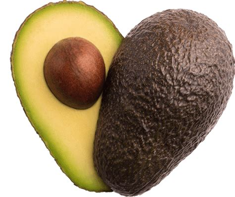do healthy fats raise cholesterol avocado nutrition facts cholesterol calories