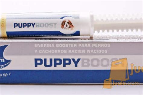 puppy boost puppy boost penguat energi untuk anak anjing dan kucing yang baru lahir jualo
