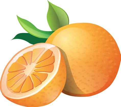 clipart graphics free an orange clipart clip of orange clipart 3621