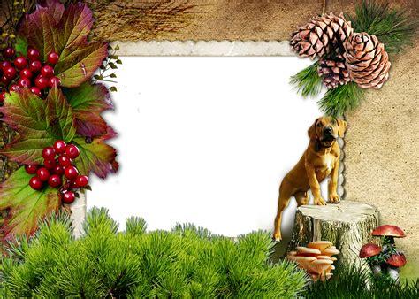 marcos para fotos png animales png marcos gratis para fotos marcos gratis para fotos png