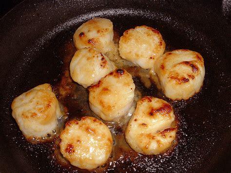 creamy broiled scallops mornay recipe dishmaps