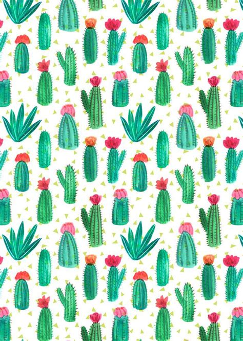 Home Decor Indonesia by I Really Really Love Cactus We Heart It Cactus