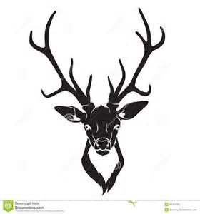 deer head isolated stock photos image 34751733
