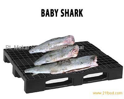 baby shark jakarta baby shark products indonesia baby shark supplier