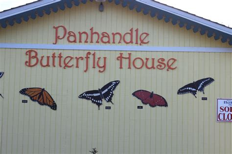 panhandle butterfly house nature tourism in the panhandle intracoastal waterway