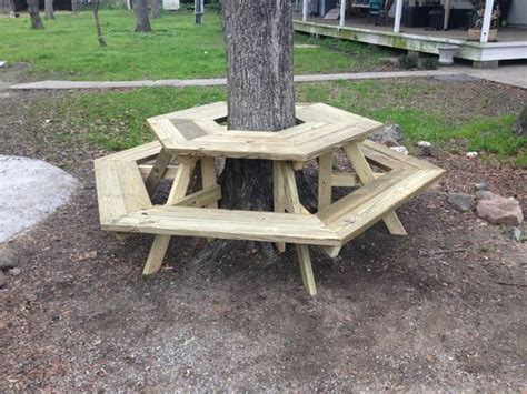picnic table   tree  built today bench