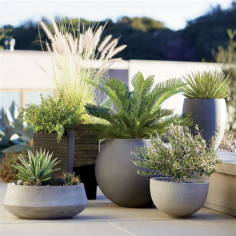 crate and barrel planters transform your yard into a garden oasis