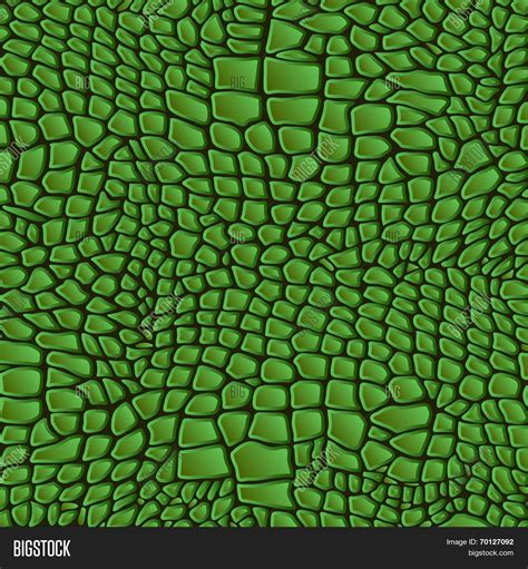 crocodile pattern en français leather animal snake textures vector photo bigstock