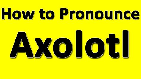 how to pronounce how to pronounce axolotl