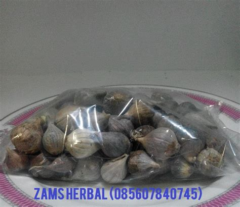 Bawang Lanang Bawang Tunggal 500 Gram harga bawang putih tunggal lokal murah 2017 spirit of dhuha