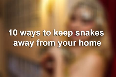 10 Types Of To Stay Away From by 10 Ways To Keep Snakes Away From Your Home According To A
