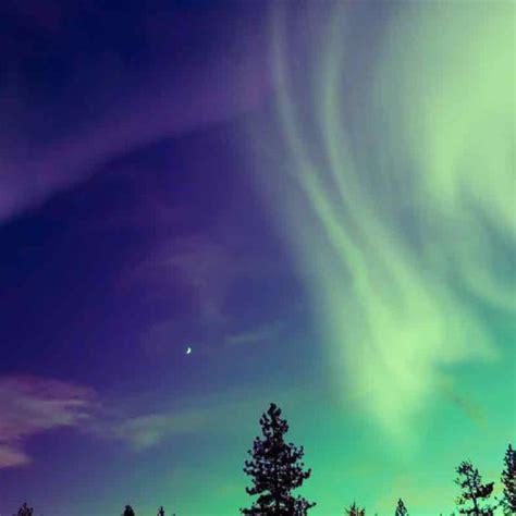 Northern Lights Distributors by Northern Lights In Sweden The Ultimate Travel Company